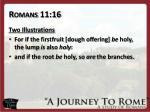 romans 11 16