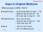 gaps in original medicare