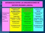 diferencias entre las organizaciones de distinto regimen laboral