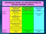 diferencias entre las organizaciones de distinto regimen laboral35