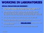 working in laboratories