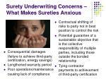 surety underwriting concerns what makes sureties anxious