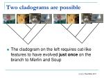 two cladograms are possible
