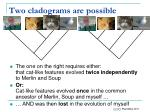 two cladograms are possible23