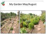 my garden may august