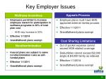key employer issues10