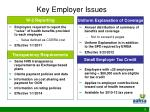key employer issues9
