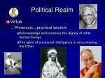 political realm6