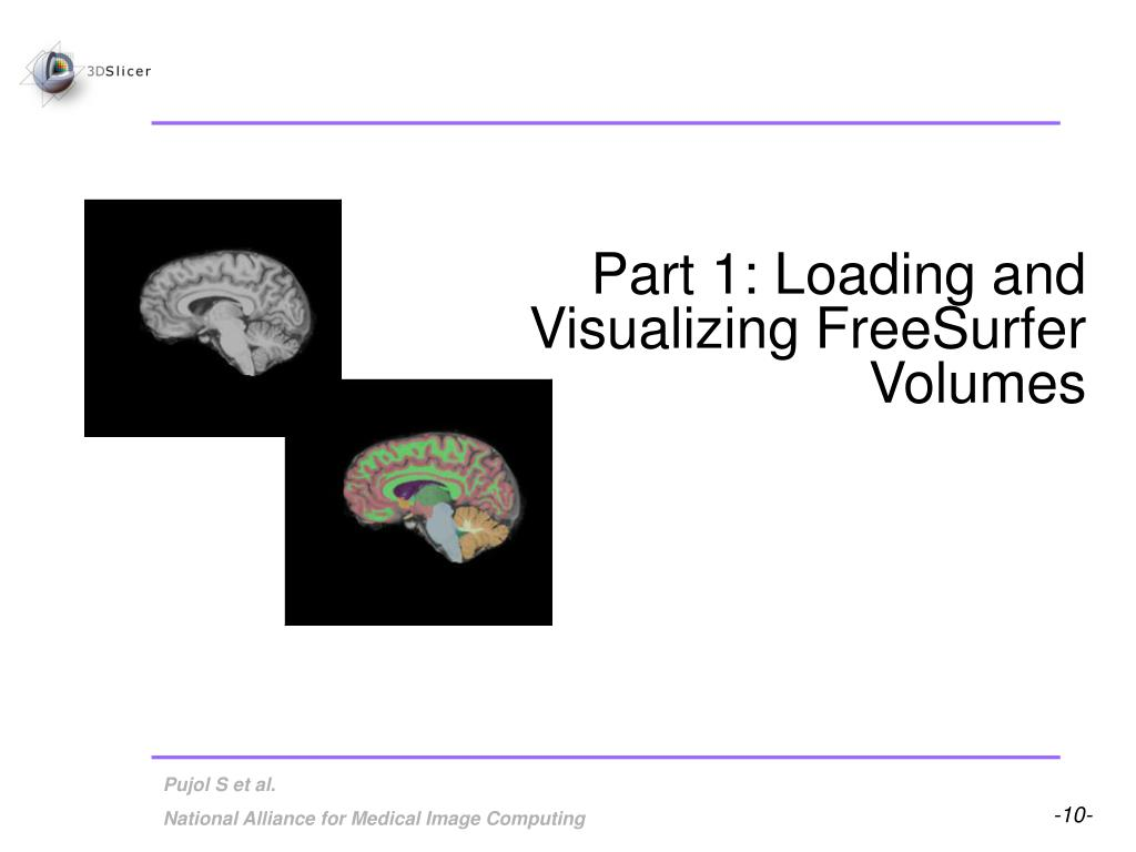 Part 1: Loading and Visualizing FreeSurfer Volumes