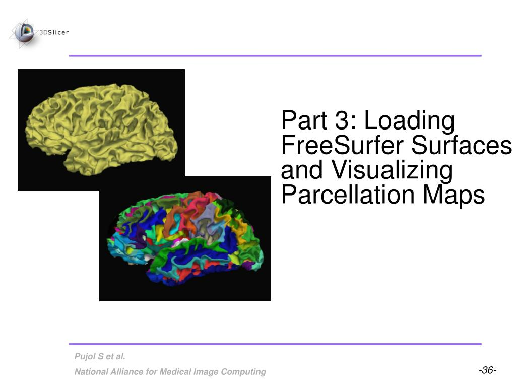 Part 3: Loading FreeSurfer Surfaces and Visualizing Parcellation Maps