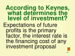 according to keynes what determines the level of investment