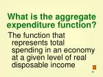 what is the aggregate expenditure function