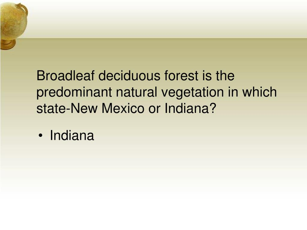 Broadleaf deciduous forest is the predominant natural vegetation in which state-New Mexico or Indiana?