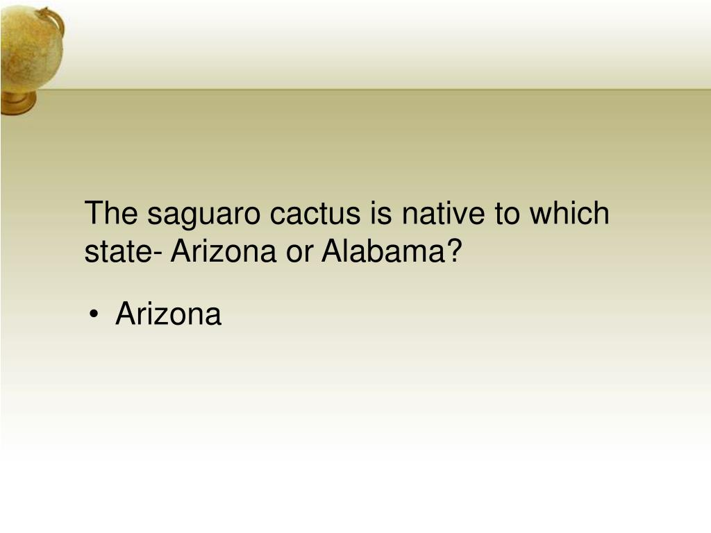 The saguaro cactus is native to which state- Arizona or Alabama?
