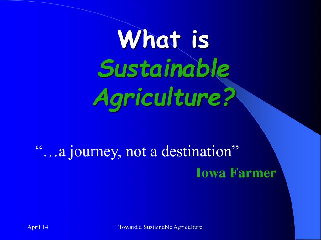 what is sustainable agriculture l.