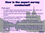 how is the expert survey conducted17