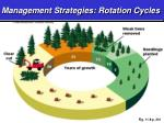 management strategies rotation cycles