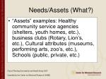 needs assets what97