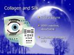 collagen and silk