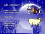 gut chromic gut