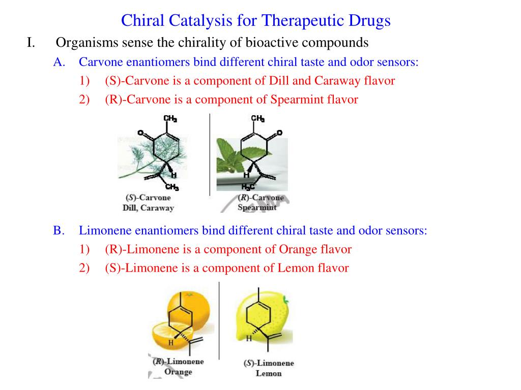chiral catalysis for therapeutic drugs l.