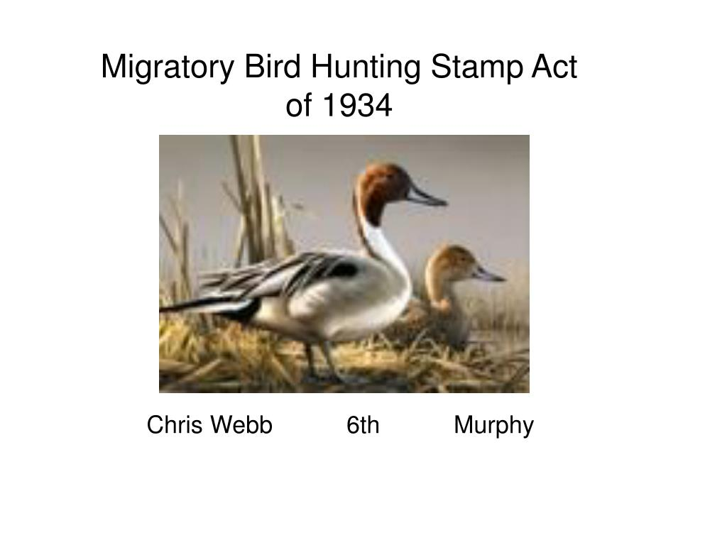 migratory bird hunting stamp act of 1934 l.