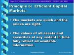 principle 6 efficient capital markets