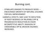 burning cont