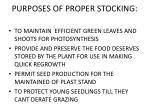 purposes of proper stocking