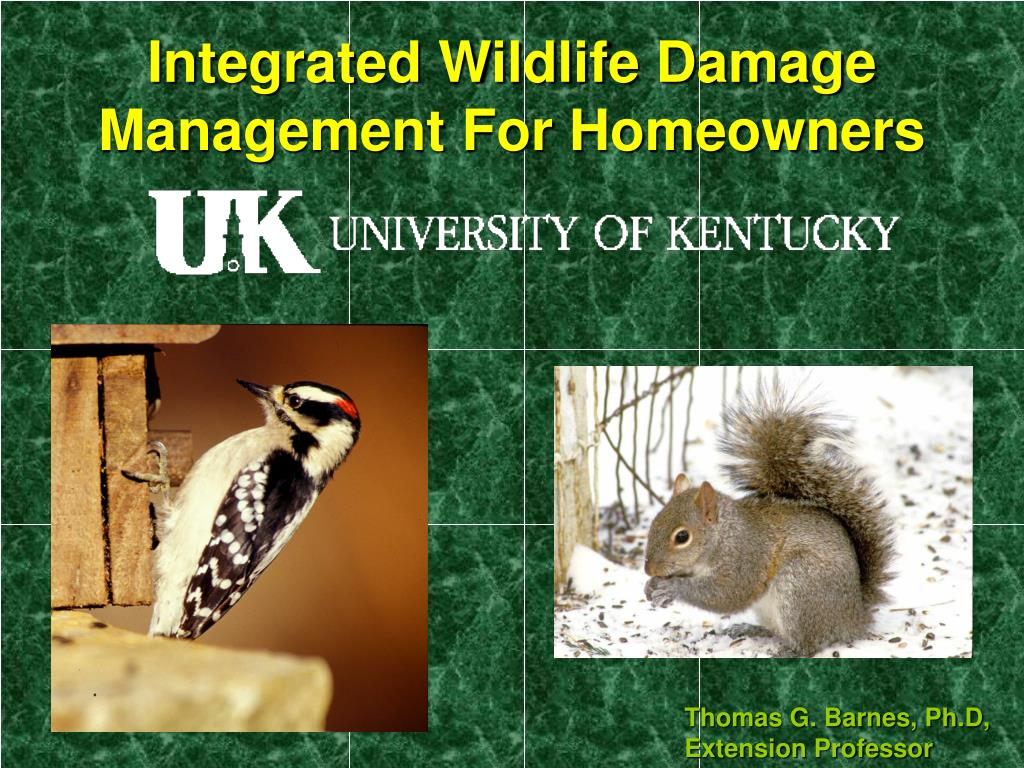 integrated wildlife damage management for homeowners l.