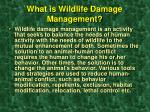 what is wildlife damage management