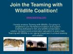 join the teaming with wildlife coalition
