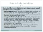 anonymization techniques