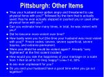 pittsburgh other items