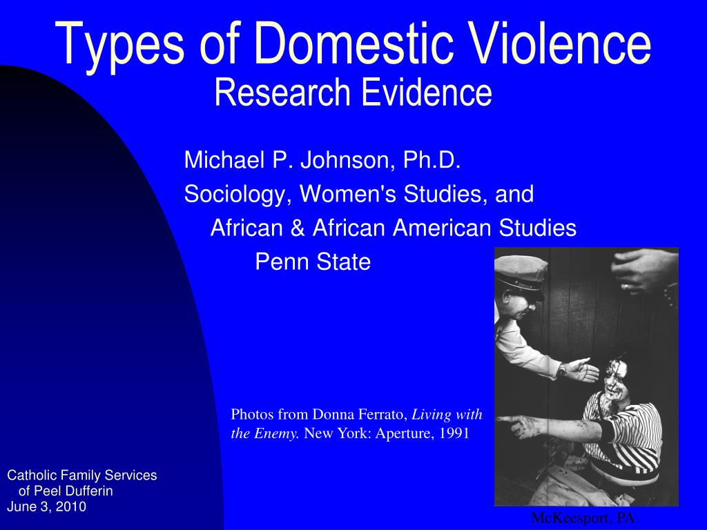 types of domestic violence research evidence l.