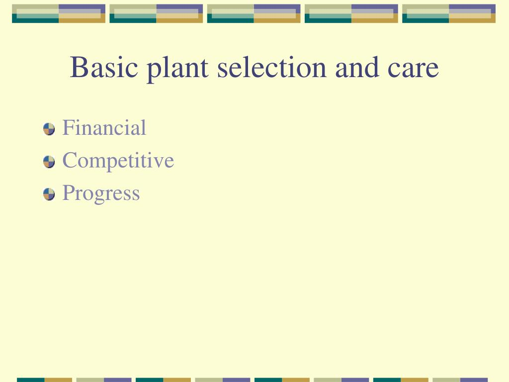 Basic plant selection and care