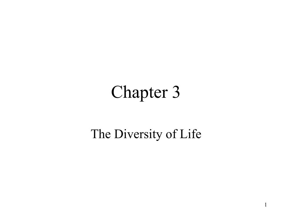 chapter 3 l.