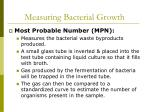 measuring bacterial growth47