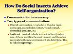 how do social insects achieve self organization
