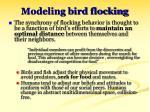 modeling bird flocking