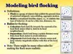 modeling bird flocking30