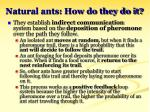 natural ants how do they do it19