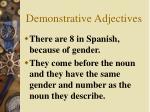 demonstrative adjectives3