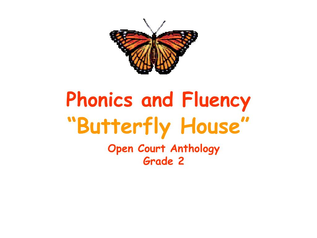 phonics and fluency l.