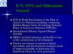 icn wfs and millennium summit