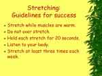 stretching guidelines for success