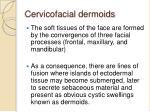 cervicofacial dermoids