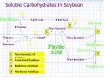 soluble carbohydrates in soybean