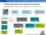 ccbay near real time hypoxia prediction