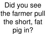 did you see the farmer pull the short fat pig in